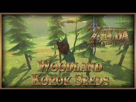 Zelda Breath of the Wild • Korok Seeds • Woodland