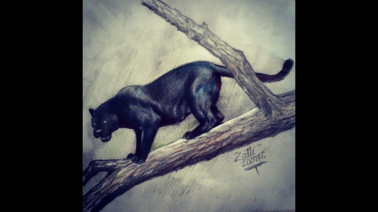 Pantera Negra Desenho Youtube