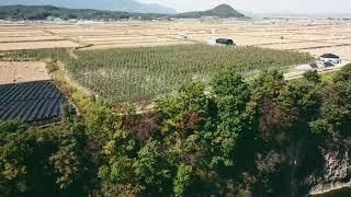 김영철 동네한바퀴 절벽위 과수원