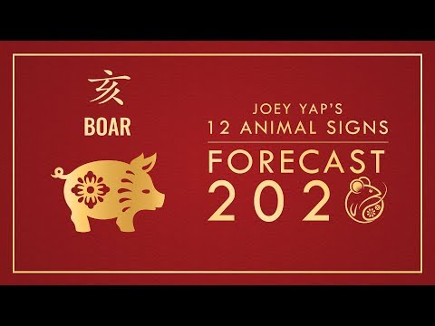 2020 Animal Signs Forecast: Boar [Joey Yap]