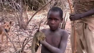 Gambar cover Visita de un poblado Hadzabe, Tanzania   Parte 2.  De caza con los Hadzabe