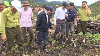Khởi tố vụ phá hơn 2 ha rừng ở huyện Đam Rông, tỉnh Lâm Đồng