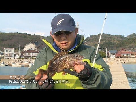 #196 自然に恵まれた日本海のジオパーク隠岐の国~知夫里島の海で豊穣の釣りを堪能する~