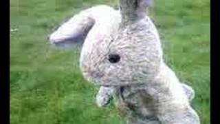 Bunny Thumbnail
