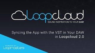 Loopcloud 20 Tutorial | Syncing Loopcloud with your DAW