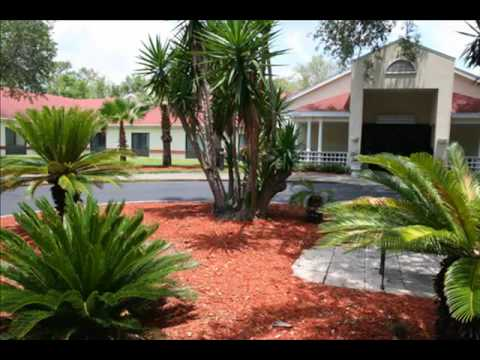 Palm Garden Of Tampa - Youtube