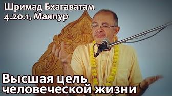 Шримад Бхагаватам 4.20.1 - Бхакти Вигьяна Госвами