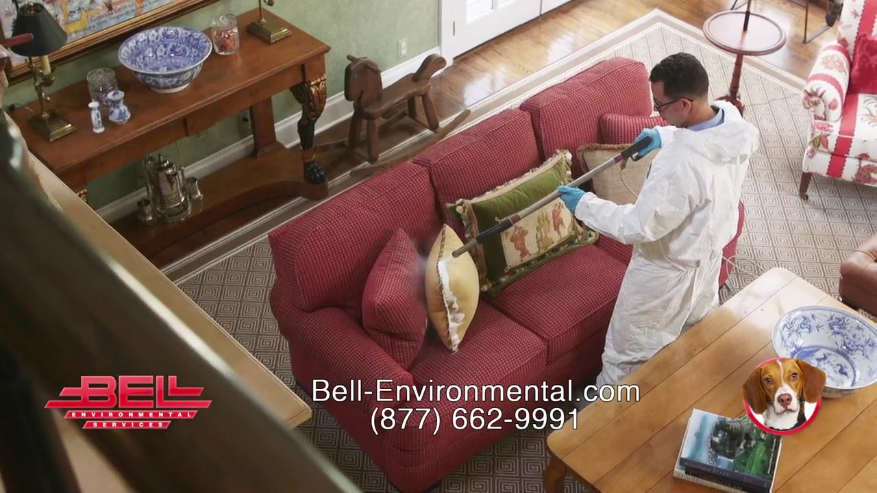roscoe's bed bug protection plan from bell environmental - youtube