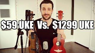 $59 Ukulele Vs. $1,300 Ukulele (Surprising Difference) - Aklot / Blackbird
