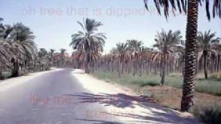 Gambar cover Mamad Naboody Bebini ...