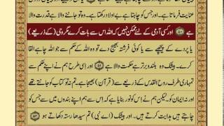Video Quran-Para 25/30-Urdu Translation download MP3, 3GP, MP4, WEBM, AVI, FLV Juli 2018