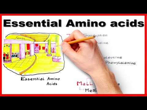 Essential Amino Acids Easiest way to remember/ mnemonic series #7