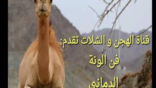 فن الونة. شلة الدماني. كلمات الشاعر: هود اليعربي. أداء: أحمد القريني و سيف القريني.