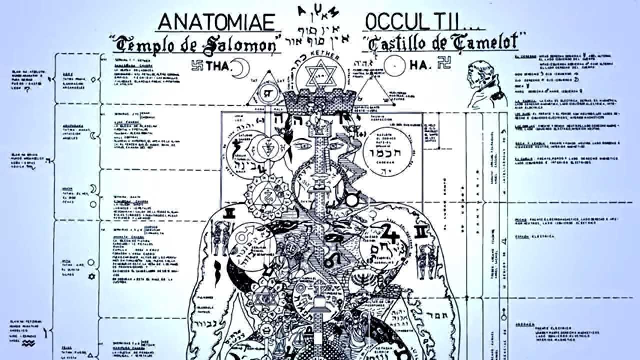 Anatomia Oculta - Anatomiæ Occultii - YouTube