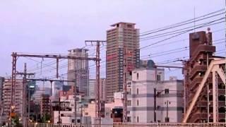 ありふれた日常の風景 2010.07.28 朝の散歩.