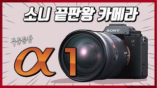 소니 최종합체 끝판왕 카메라 : Sony A1