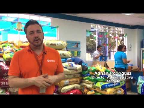 UNAM-Banfield atiende a mascotas afectadas por sismo - UNAM Global
