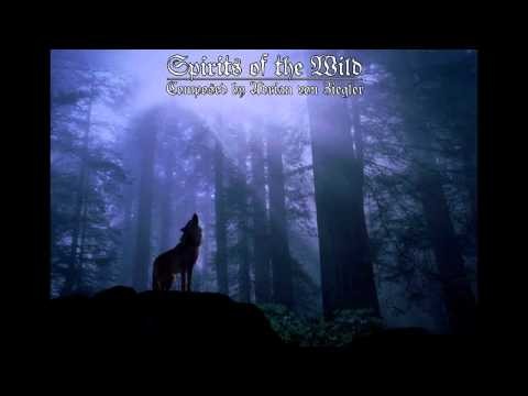 Celtic Music - Spirits of the Wild