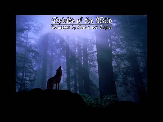 Celtic Music - Spirits of the Wild