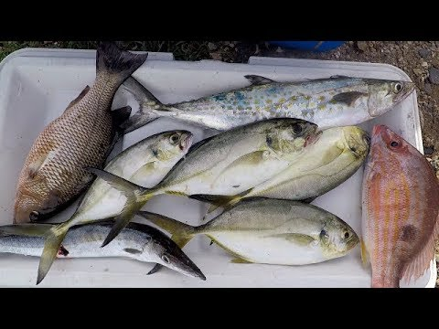 FISHING On A SMALL BOAT For FOOD - Inshore Fishing - Trinidad, Caribbean