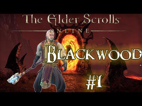 Elder Scrolls  Online - Blackwood Playthrough (story and stuff) |