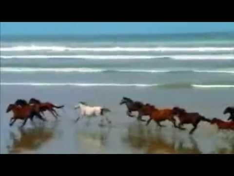 I Am Sailing - Rod Stewart - Juve & Jay D Techno Remix + lyrics & Translate French