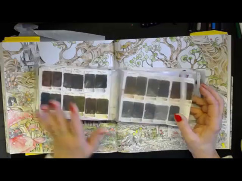 Mythomorphia, 21 Ct Wtravel Water Colour Book Chat, Revamp And A Sooty The Cat Cam