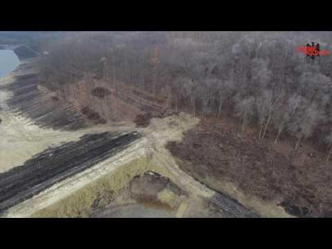 DRONA // Pădurea defrișată din Fălești