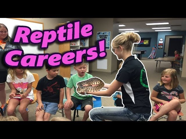 how-to-make-a-career-with-reptiles