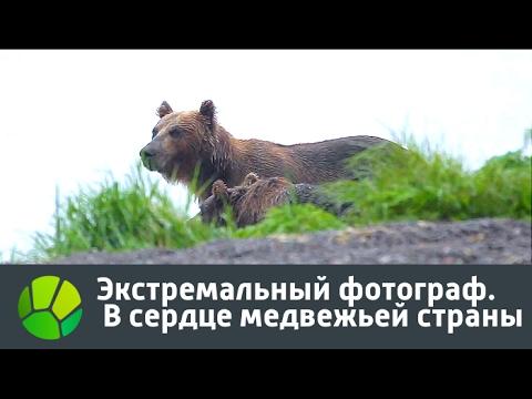 - сайт любителей животных