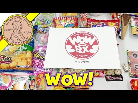 Wow Japanese Candy Subscription Box - I Could Not Stop Eating!