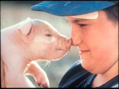 Iowa Swine Day 2017 Joe Schwarcz, Countering misperceptions about science in meat production