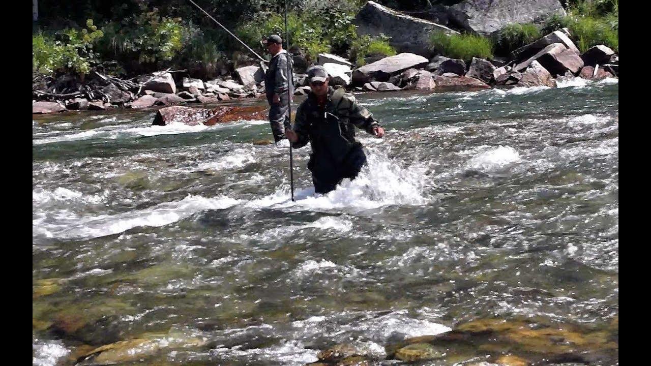 РЫБАЛКА НА ТЕЧЕНИИ СБИВАЮЩЕМ С НОГ!!!Ловля хариуса! Горный Алтай ,таежные реки.