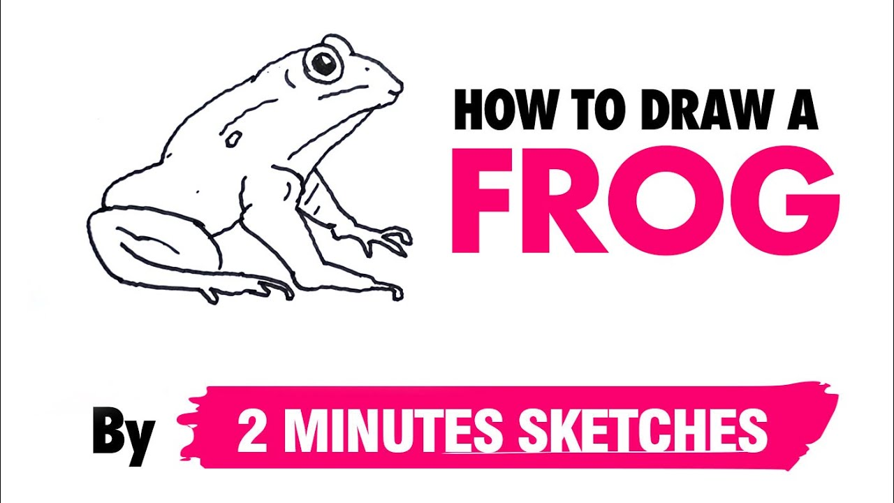 How to draw a Frog | By 2 Minutes Sketches - YouTube