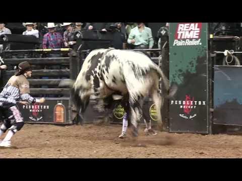 Crazy Wrecks from the PBR World finals - Cody Webster Professional Bullfighter