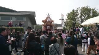 2017.3.19千早赤阪村施行60周年パレード(水分)入場