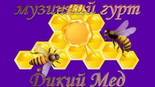 Гурт Дикий мед