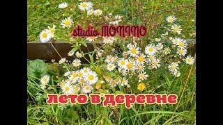 """Фильм """"лето в деревне"""""""