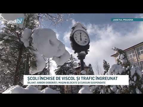 SCOLI INCHISE DE VISCOL SI TRAFIC INGREUNAT YOUTUBE