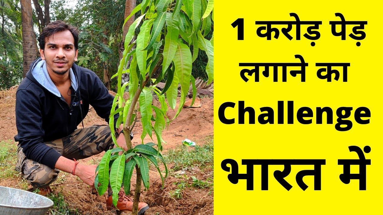 1 Crore TREE PLANTATION by Indian YouTubers | EP-03 - YouTube