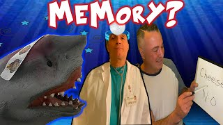 SHARK PUPPET LOSES HIS MEMORY YEAH!?!?