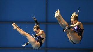 【オリンピック】動画で詳しく解説!【水泳】一瞬に凝縮された美【飛込】