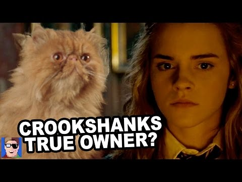 Harry Potter Theory: Who Was Crookshanks Original Owner?