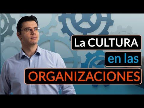 Cómo la CULTURA influye en las ORGANIZACIONES | Cultura organizacional | Cultura corporativa