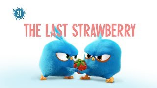 Angry Birds Blues | The Last Strawberry - S1 Ep21