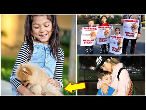 DO WE FINALLY BRING OUR PUPPY MARCH POM HOME?!! *Part 3*