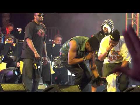 Wu Tang Clan   Tearz  at Coachella