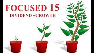 BEST 15 STOCKs  FOCUSED PORTFOLIO FOR NEW INVESTORS|| DIVIDEND + GROWTH