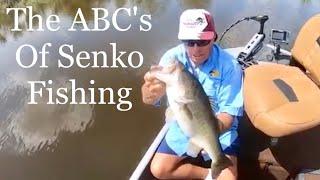 ABC's of Senko fishing