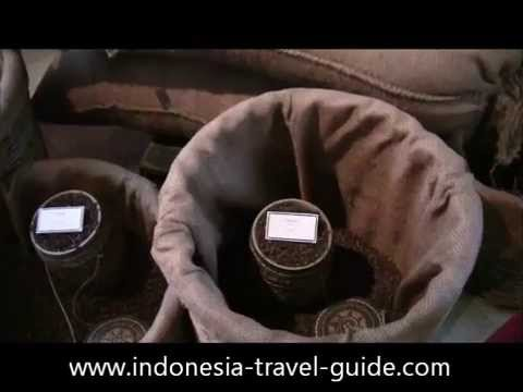 Surabaya Travel Guide